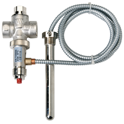 Temperature probe with valve